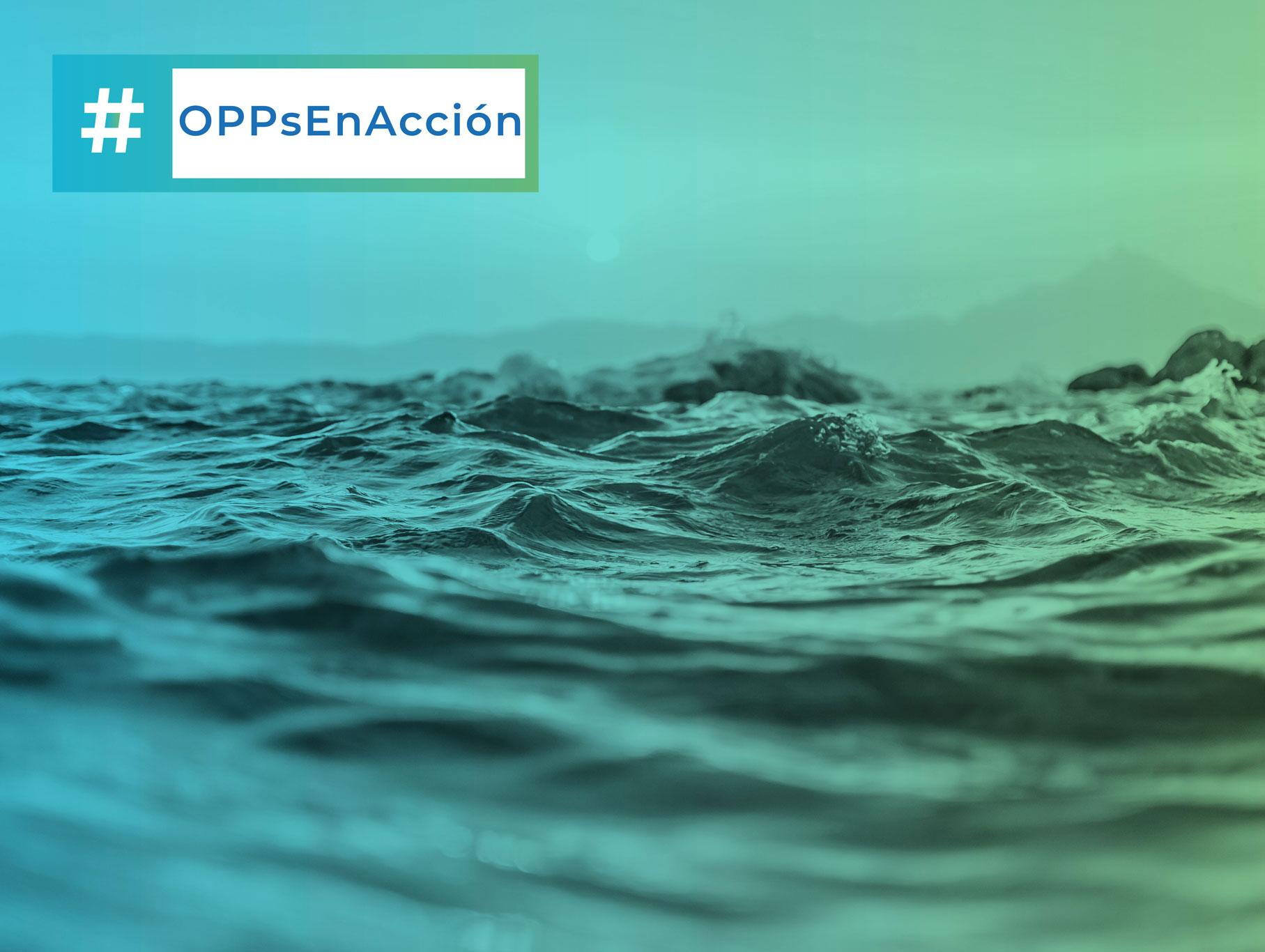 Coordinación técnica del 1er CONGRESO INTERNACIONAL #OPPsEnACCIÓN
