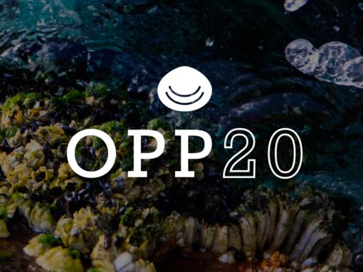 Plan de comunicación para OPP20