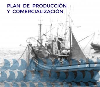 PLANES DE PRODUCCIÓN Y COMERCIALIZACIÓN