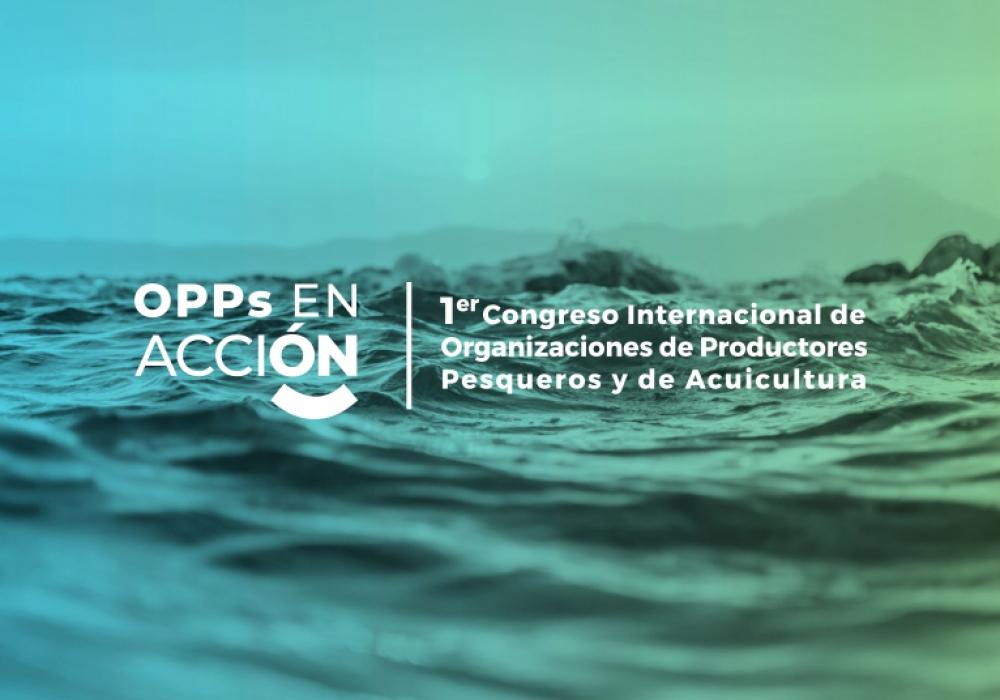 Coordinación técnica de congreso internacional